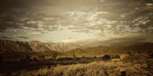 landscape023