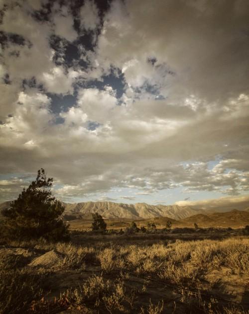 landscape025