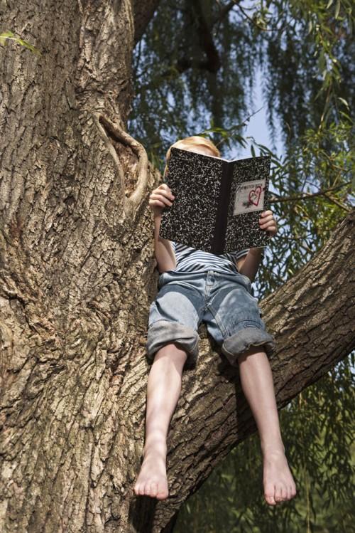 Boy (10-12) reading book on tree