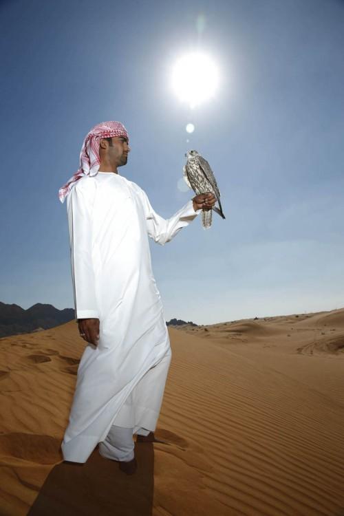 desert012